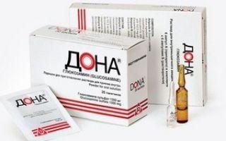 Сироп хондрофит: состав препарата, его преимущества и лечебные свойства, показания и противопоказания к назначению, способ и длительность применения, аналоги и цена средства