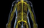 Межреберная невралгия при беременности: причины появления, симптомы, диагностика, медикаментозная терапия и народные методики лечения