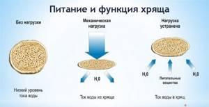 Артогистан: состав и побочные действия, описание лекарства и форма выпуска, показания и противопоказания к применению, отзывы