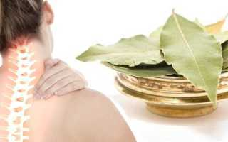 Лавровый лист при остеохондрозе: что нужно знать о лечении, полезные свойства и вред растения, приготовление лекарства и народные рецепты, противопоказания