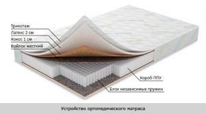 Как правильно спать при сколиозе: правила выбора ортопедического матраса и подушки, рекомендуемые позы для сна