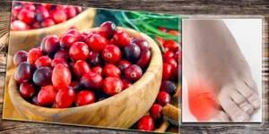 Клюква при подагре: чем полезна и вредна ягода, правила применения и рекомендуемое количество, полезные рецепты