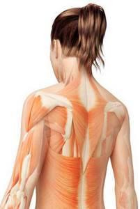 Тренировки при сколиозе: можно или нужно, гимнастика для спины, рекомендованные и запрещенные упражнения