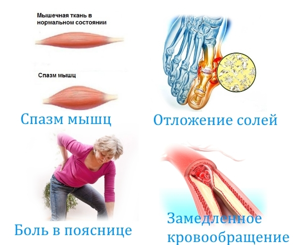 Бальзам Огаркова для лечения суставов: состав и лечебные свойства, показания к приему и способы использования, противопоказания и отзывы об эффективности средства