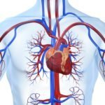Физиотерапия при грыже поясничного отдела позвоночника: влияние на организм и описание всех методов, противопоказания и какие процедуры выбрать