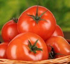 Лечебные свойства помидоров при заболеваниях суставов: польза и вред томатов, их влияние на организма человека, рецепты приготовления целебных средств и правила их применения