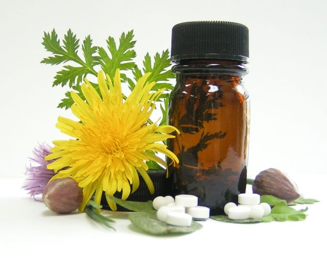 Лечим подагру гомеопатией: правда и мифы, стоит ли использовать альтернативную терапию, применение, возможные осложнения и отзывы