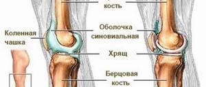 Жидкость в коленном суставе: как избавиться, классификация и признаки болезни, методы диагностики, рецепты народной медицины и консервативные способы терапии, показания для операции