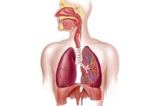 Ревматоидный артрит — причины, симптомы, лечение