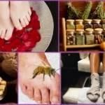 Народные средства для лечения подагры на ногах: причины возникновения, симптомы, правила использования фитотерапии, компрессов и ванночек для профилактики