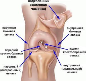 Растяжение связок: причины и признаки, симптомы, первая помощь и лечение, восстановление после операции, рекомендации хирургов