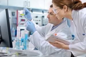 Эффективность лечения подагры с помощью пиявок: польза гирудотерапии, показания и противопоказания к назначению, схема проведения и длительность процедур