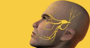 Защемление тройничного нерва: причины и симптомы патологии, правила оказания первой помощи, современные и народные методы лечения, профилактика рецидивов
