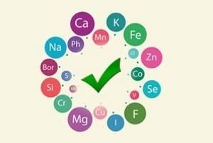 Биокальцевит: состав и принцип действия, показания и противопоказания к применению, стоимость и отзывы пациентов