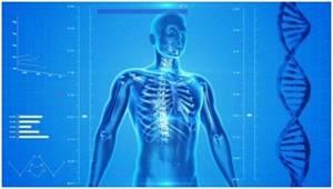 Миелография позвоночника: показания и противопоказания к исследованию, подготовка к процедуре и механизм ее проведения, возможные осложнения и цена