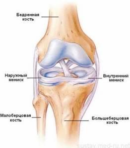 Разрыв медиального мениска коленного сустава: характерные признаки и причины травмы, стандартные этапы реабилитации и лечения, сроки восстановления