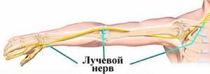 Неврит лучевого нерва: причины появления, виды и механизм развития заболевания, клинические симптомы и методы диагностики, лечение и реабилитационный период
