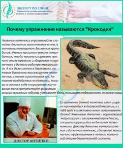 Крокодил: эффективное упражнение для позвоночника, пошаговая инструкция к технике выполнения комплекса, польза и противопоказания, когда не рекомендован, мнение врачей