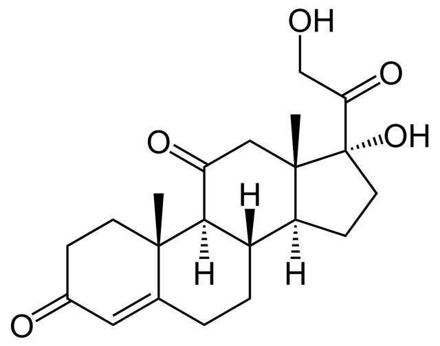 Бурсит пятки: описание заболевания, признаки и симптоматика, принципы диагностики и лечебные методы