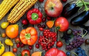 Питание и диета при коксартрозе тазобедренных суставов: цели правильного рациона, подробный перечень разрешенных и запрещенных продуктов, примерное меню