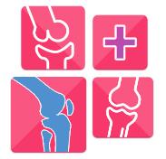 Препарат Скипофит для лечения заболеваний суставов: состав и лечебные свойства, показания и противопоказания к назначению, способ применения и отзывы пациентов