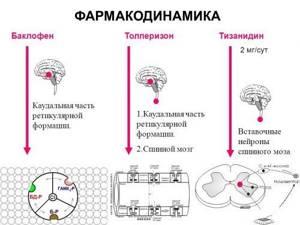 Аналоги препарата Сирдалуд: перечень российских и зарубежных заменителей, их принцип действия и сравнительные характеристики, стоимость и рекомендации по применению средств
