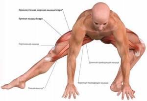 Растяжение мышц бедра: причины, симптомы, первая помощь, лечение народными и медицинскими средствами