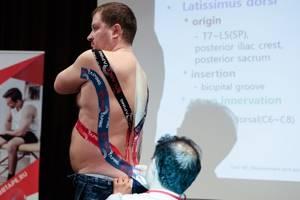 Тейпирование спины: разновидности методики, показания и противопоказания к назначению, способы и правила наклеивания тейпов, отзывы об эффективности и стоимость процедуры