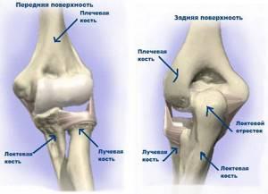 Эндопротезирование локтевого сустава: каковы риски, описание операции и процесс реабилитации после, стоимость и противопоказания
