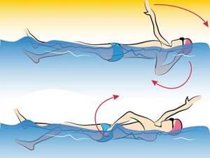 Бассейн при остеохондрозе шейного отдела позвоночника: показания и меры предосторожности, польза плавания при лечении и реабилитации, эффективные техники и рекомендации врачей