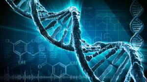 Прогрессирующая оссифицирующая фибродисплазия: характеристика заболевания, симптомы и клиническая картина, как развивается и как лечить, осложнения и последствия