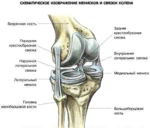 Нестабильность коленного сустава: причины и классификация патологии, специфические симптомы, методы диагностики и лечения, профилактика и возможные осложнения