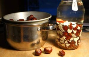 Каштан для суставов: состав и полезные свойства растения, правила заготовки сырья, рецепты народных средств и рекомендации по их применению, меры предосторожности