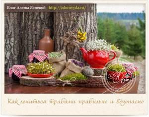 Ромашка для лечения подагры: химический состав и полезные свойства растения, рецепты целебных средств и способы их применения, важные советы и рекомендации