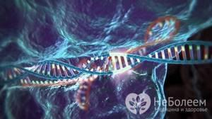 Дисплазия соединительной ткани: признаки и факторы риска, клиническая картина и особенности проявления болезни, возможные осложнения и последствия, методы терапии и диагностики
