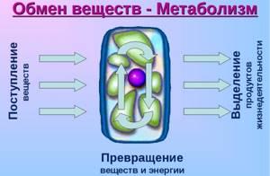 Гель Кетопрофен: состав и лечебные свойства препарата, показания и противопоказания к назначению, варианты использования и рекомендуемая дозировка, цена и аналоги средства
